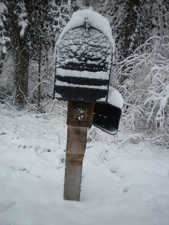 Protect Your Mailbox from Another Indiana Winter